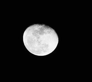 モノクロで月をとらえる.jpg